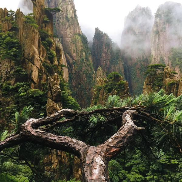 Beautiful Nature, part 5