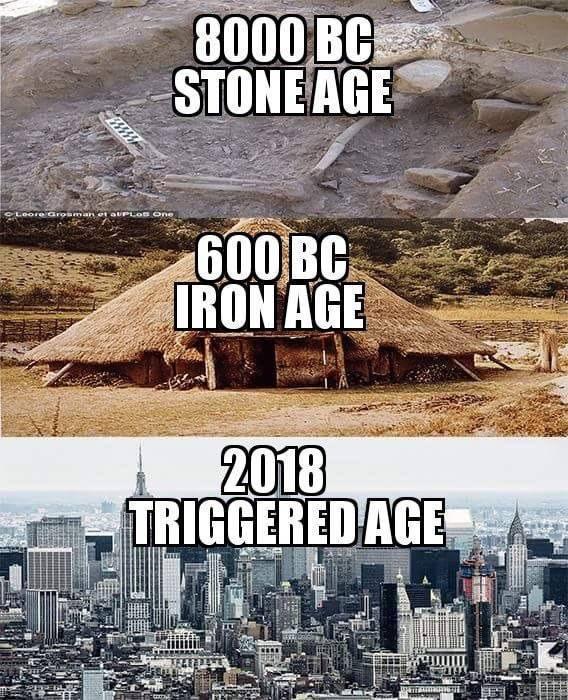 Fresh Funny Memes, part 2