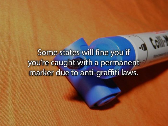 Odd Laws You Probably Didn't Know You Were Breaking