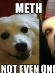 Meth: Not Even Once Meme