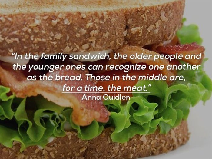 Funny Quotes About Family Life