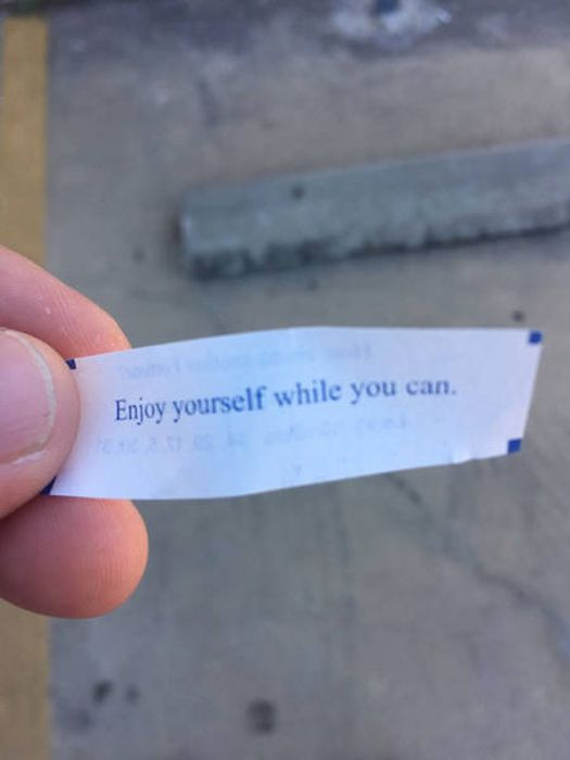Strange And Funny Fortune Cookie Messages