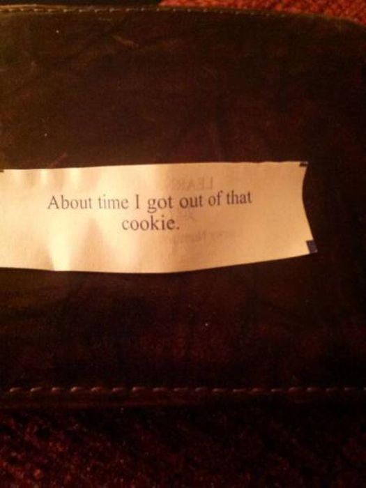 Strange And Funny Fortune Cookie Messages Fun