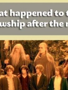 What Happened To The Fellowship After The Ring