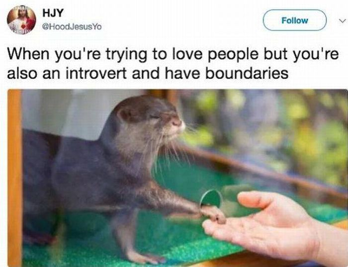 Problems Introverts Have