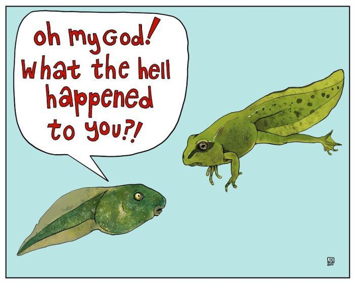 A Girl Makes Animal Comics To Cope With Anxiety