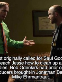 "Facts About ""Breaking Bad"""