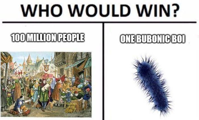 """Who Would Win?"" Meme"