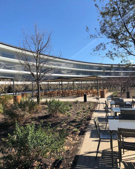 Photos Of The New Apple Headquarters