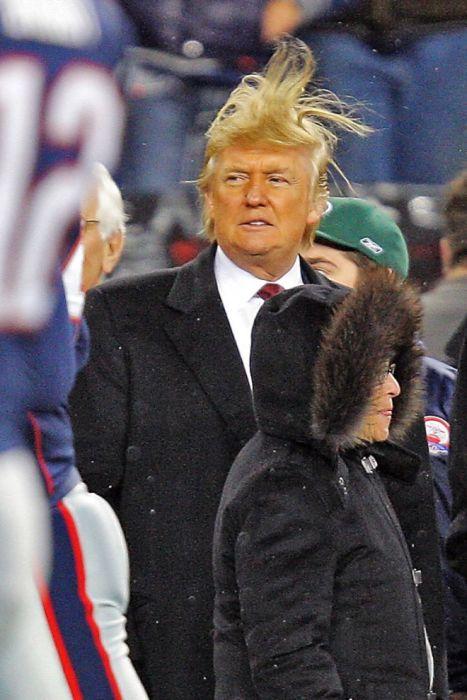 Trump vs. Wind