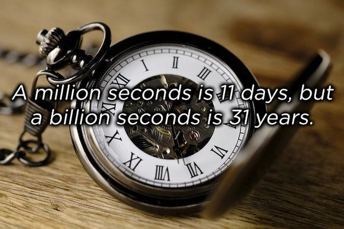 One Sentence Facts