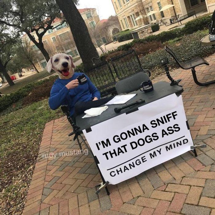 'Change My Mind' Memes