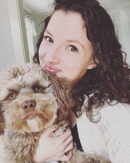Dog That Looks Like A Human