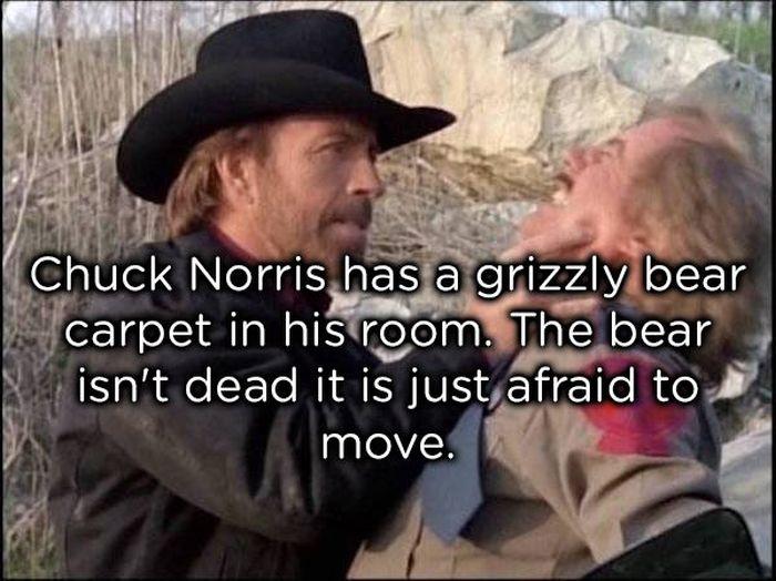 Chuck Norris Jokes Others