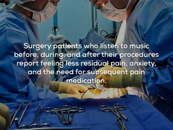 Interesting Facts About Music