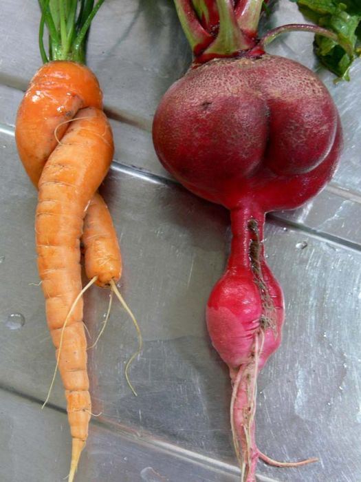 Things That Look Like Butts
