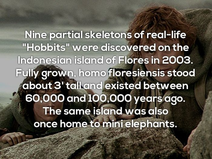 Interesting Facts, part 28