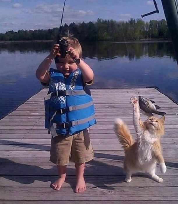 Selection Of Funny Pictures