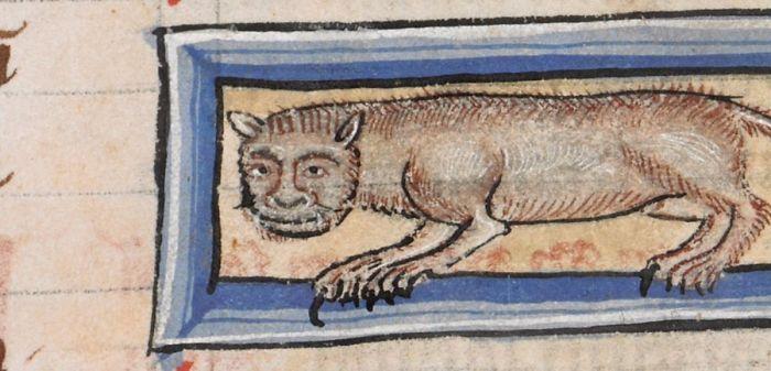 Medieval Cat Paintings