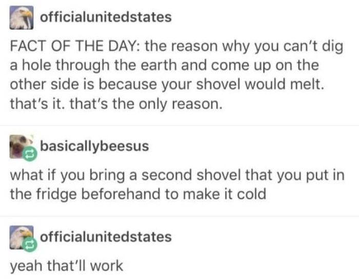 Stupid Humor