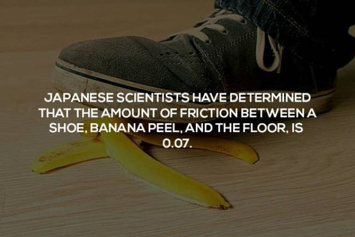 Interesting Science Facts, part 2