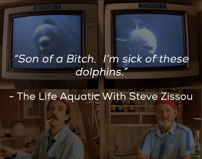 Words Of Wisdom From Bill Murray's Best Movie Characters