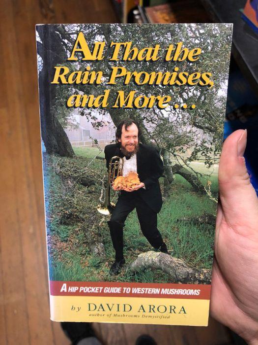 Unusual Finds In The Bookstore