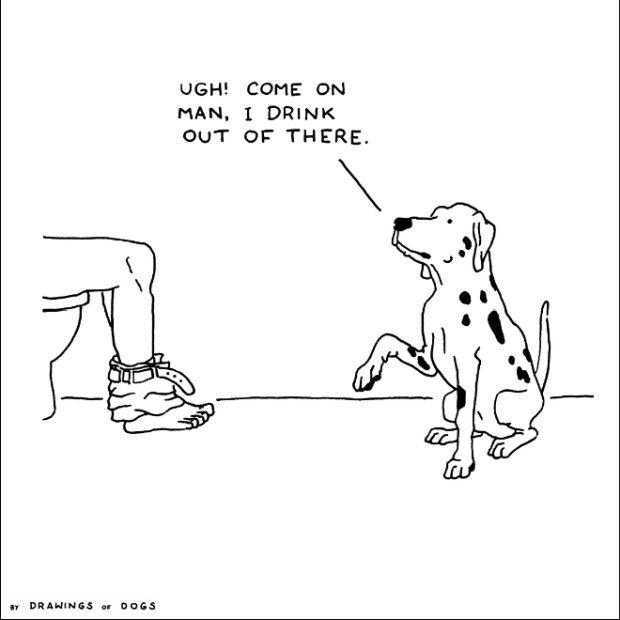 Cartoons by Henry James Garrett