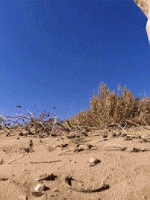 Awesome GoPro Moments