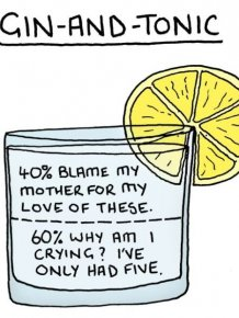Brutally Honest Guide To Booze