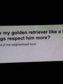 Funny Moments On Yahoo Answers