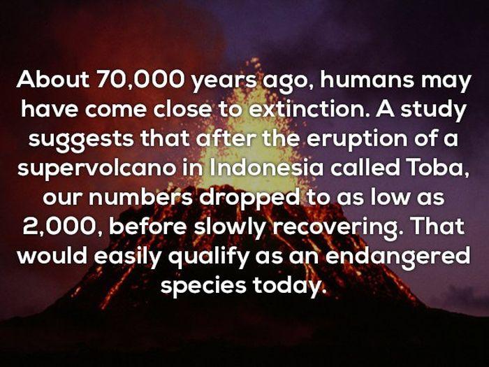 Random Facts, part 4