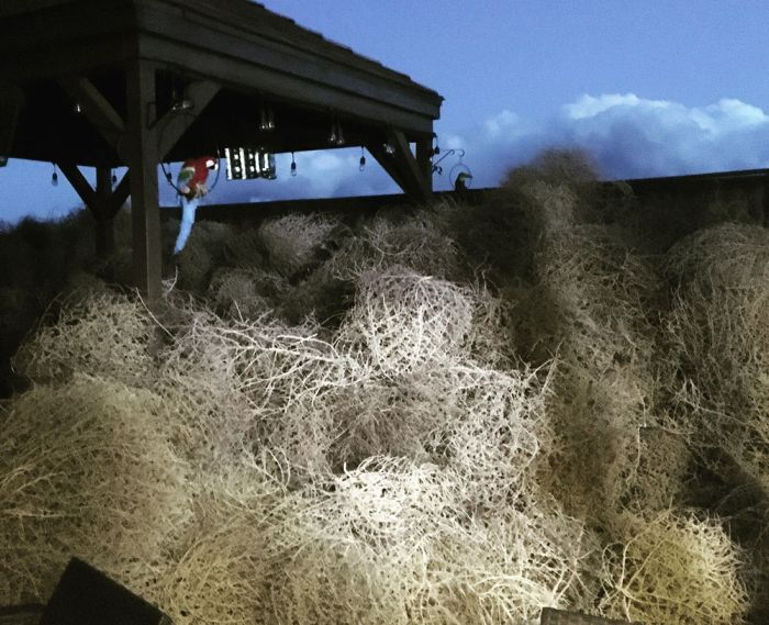 Thousands Of Rolling-Field Balls Flooded Several American States