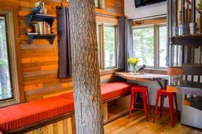A Luxurious Treehouse