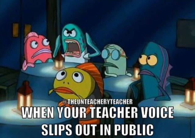 Memes By Teachers And About Them