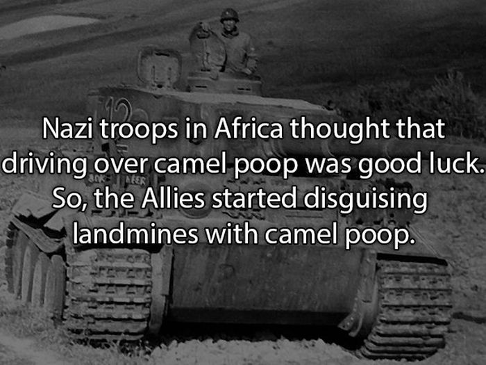 Facts About Poop