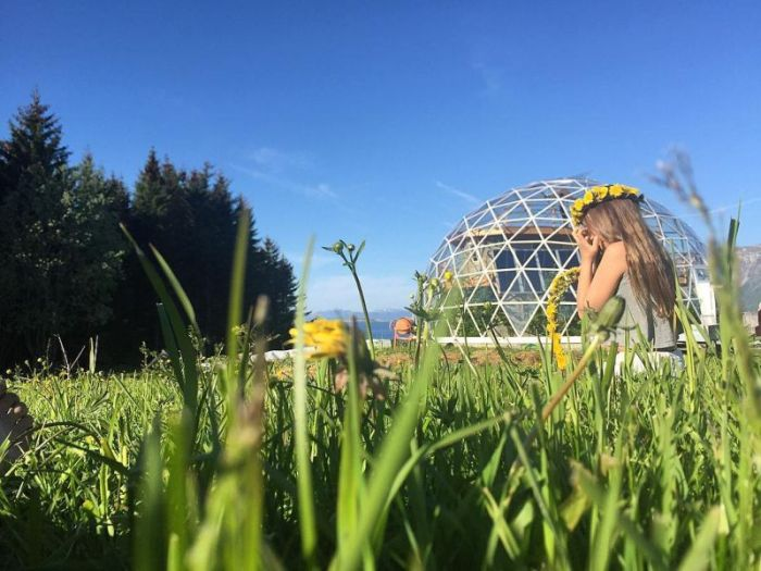 Eco-house With A Glass Dome