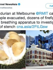 Hundreds Evacuated For What Smelled Like A Gas Leak