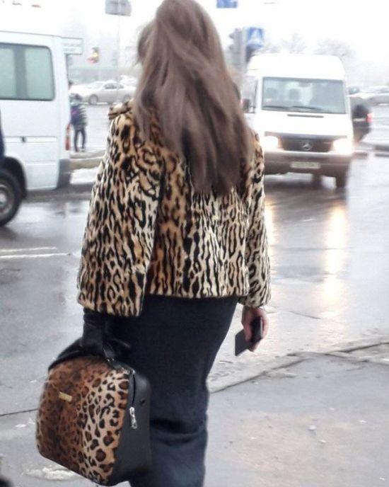Leopard Fashion