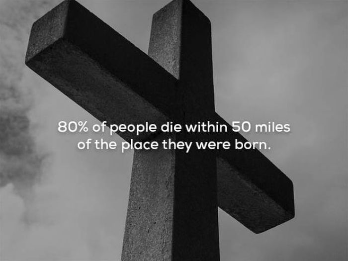 Scary Facts, part 12