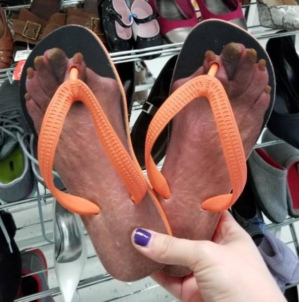 Strange Tings From Thrift Shops