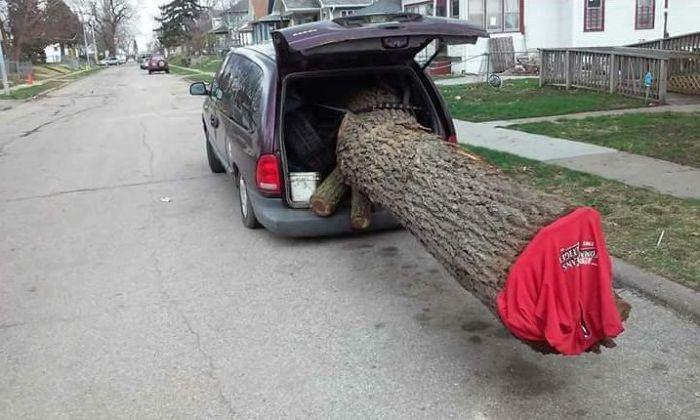 Tree Transportation