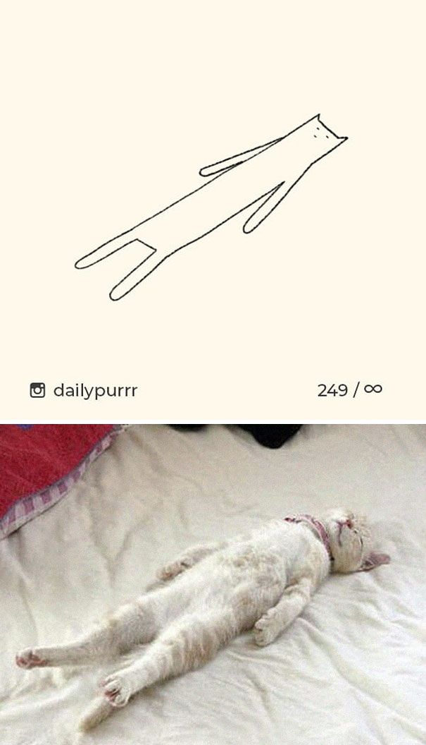 Times 'Stupid Cat Drawings' Made Everyone Laugh With How Accurate They Were