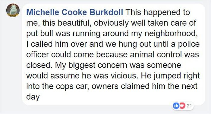 "Officer Responds To A Call About ""Vicious Dog"""
