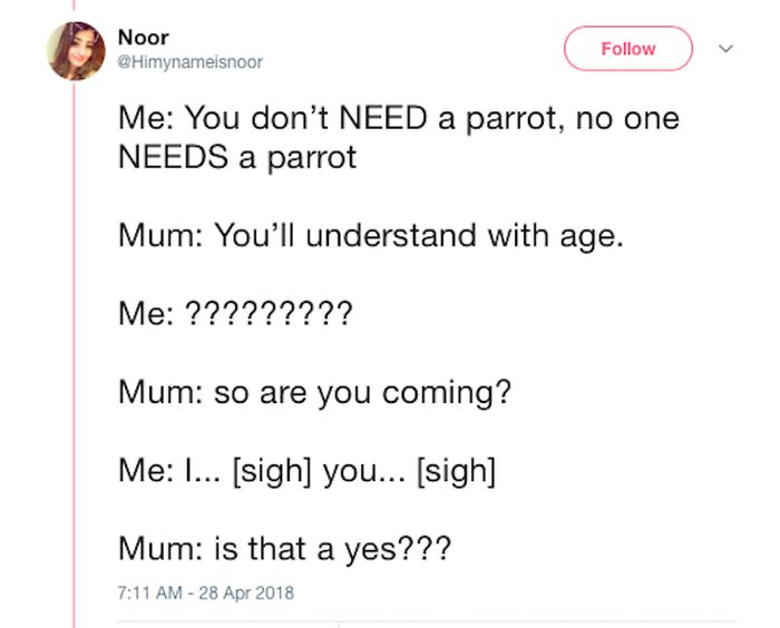 Mom and Daughter Go On A Hilarious Quest For Some Secret Parrots