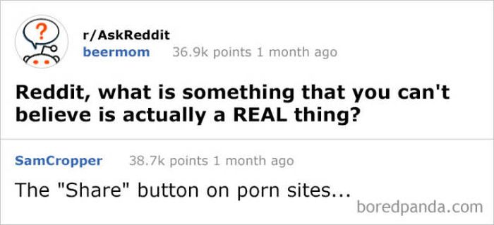 Funny Answers On Reddit