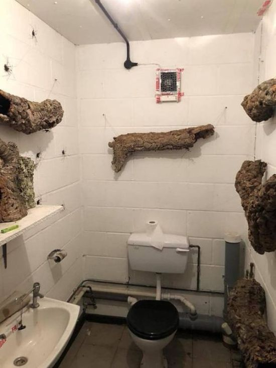 Bathroom Decor.Scary Bathroom Decor Others