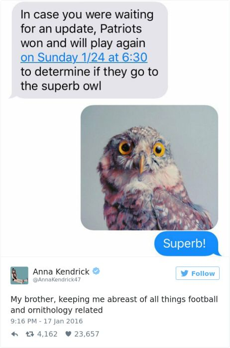 Times Anna Kendrick Was The Absolute Funniest Person On Twitter