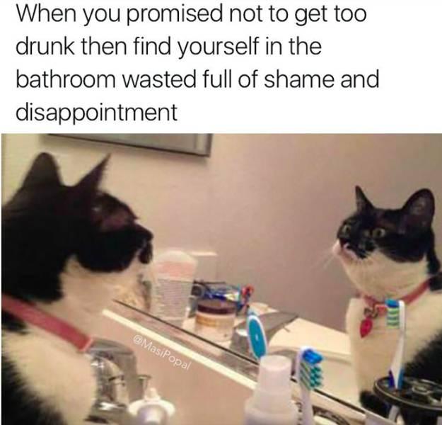 Funny Memes, part 14