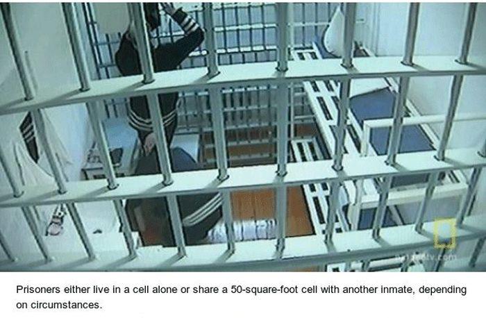 Black Dolphin Prison, Where Russia's Worst Criminals Serve Their Life Sentences